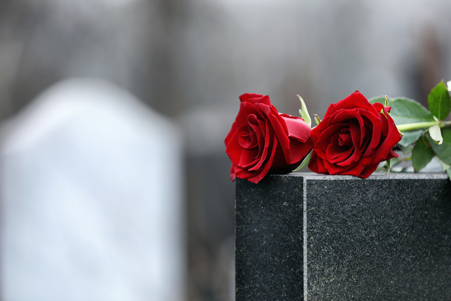 Red roses on tombstone